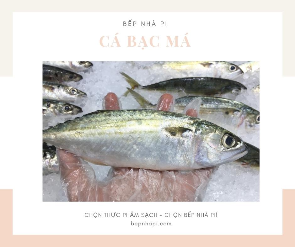 Cá bạc má tươi ngon | bếp nhà pi | bepnhapi.com
