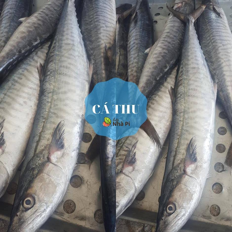 Cá thu tươi ngon   bếp nhà pi   bepnhapi.com
