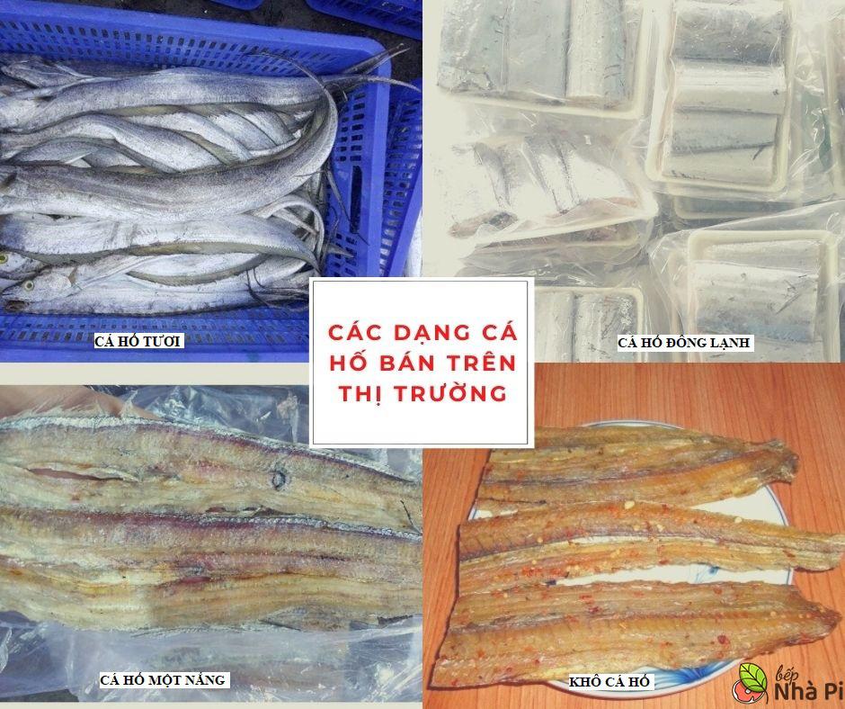 Các loại cá hố trên thị trường   Bếp Nhà Pi   bepnhapi.com