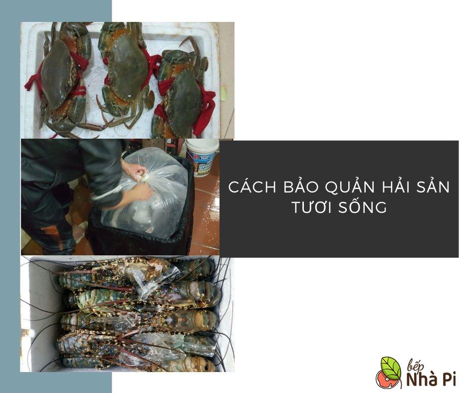 Cách bảo quản và vận chuyển hải sản đi xa   bếp nhà pi   bepnhapi.com
