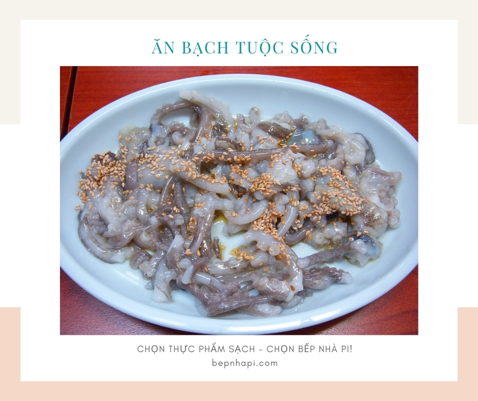 Bạch tuộc ăn sống | bếp nhà pi | bepnhapi.com