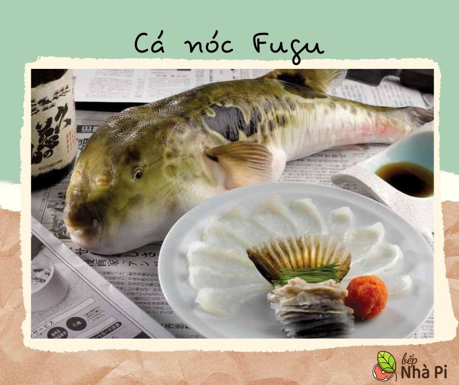 Cá nóc Fugu | 9 món hải sản đắt nhất hành tinh